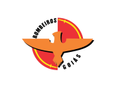 CBMGO - Corpo de Bombeiro Militar do Estado de Goiás