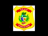 Agente Penitenciario GO - AGEPEN GO: Secretaria de Estado de Administração do Estado de Goiás - SEAD GO